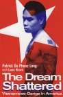 'The Dream Shattered' by Du Phuc Long and Ricard
